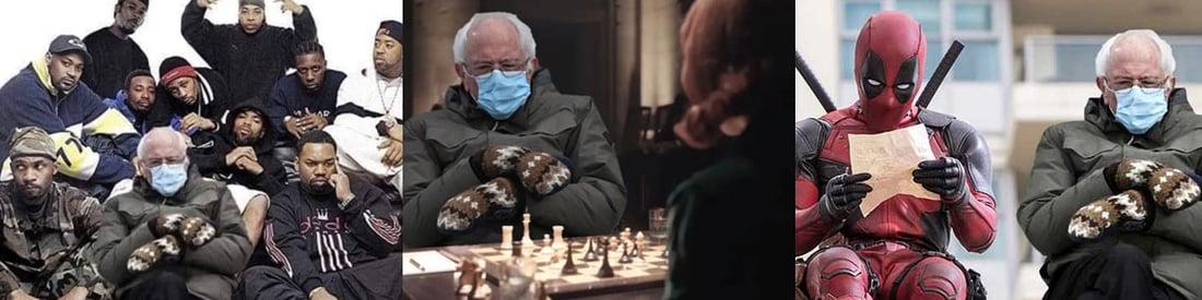 FineDings Januar 2021 Bernie