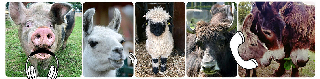 Collage der verfügbaren Tiere die zum Call eingeladen werden können.
