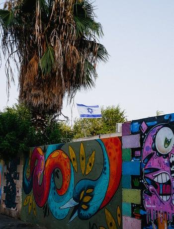 Bunt bemalte Mauer, dahinter große Palme und israelische Fahne
